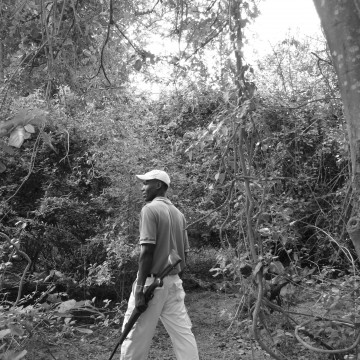Walking Safari Selous