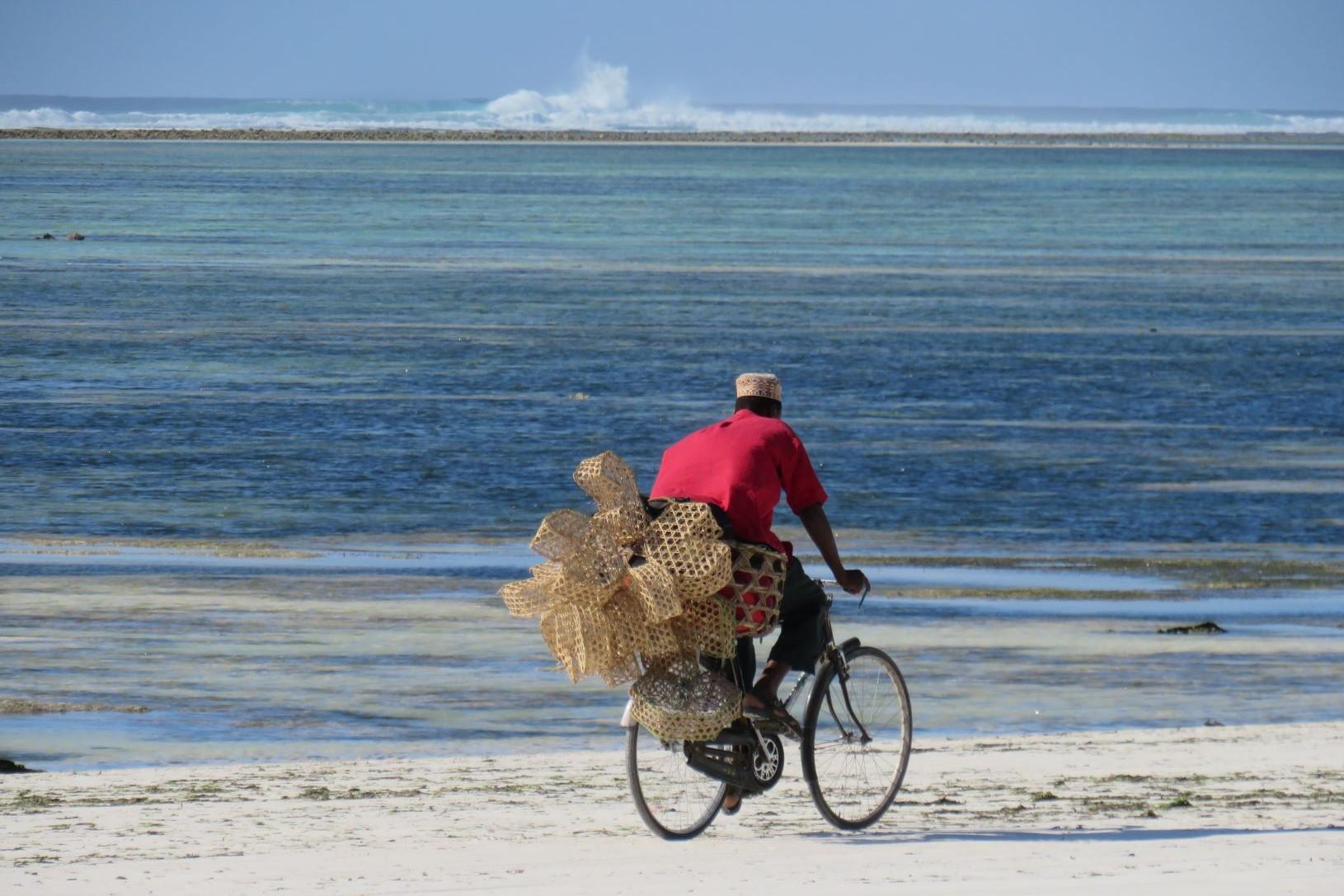 Ruaha Selous and Zanzibar 3