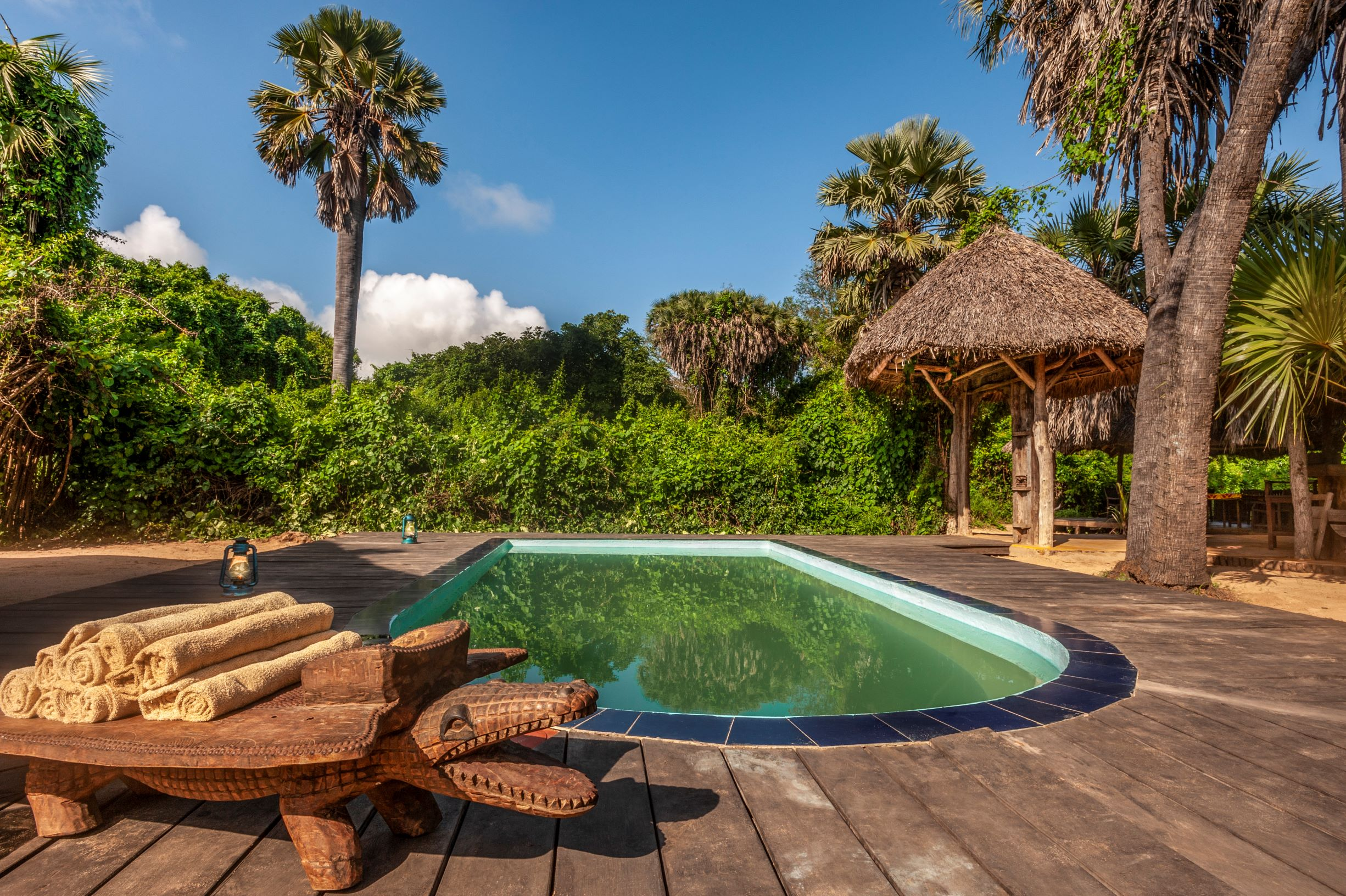 Selous & Zanzibar 10 days special 1